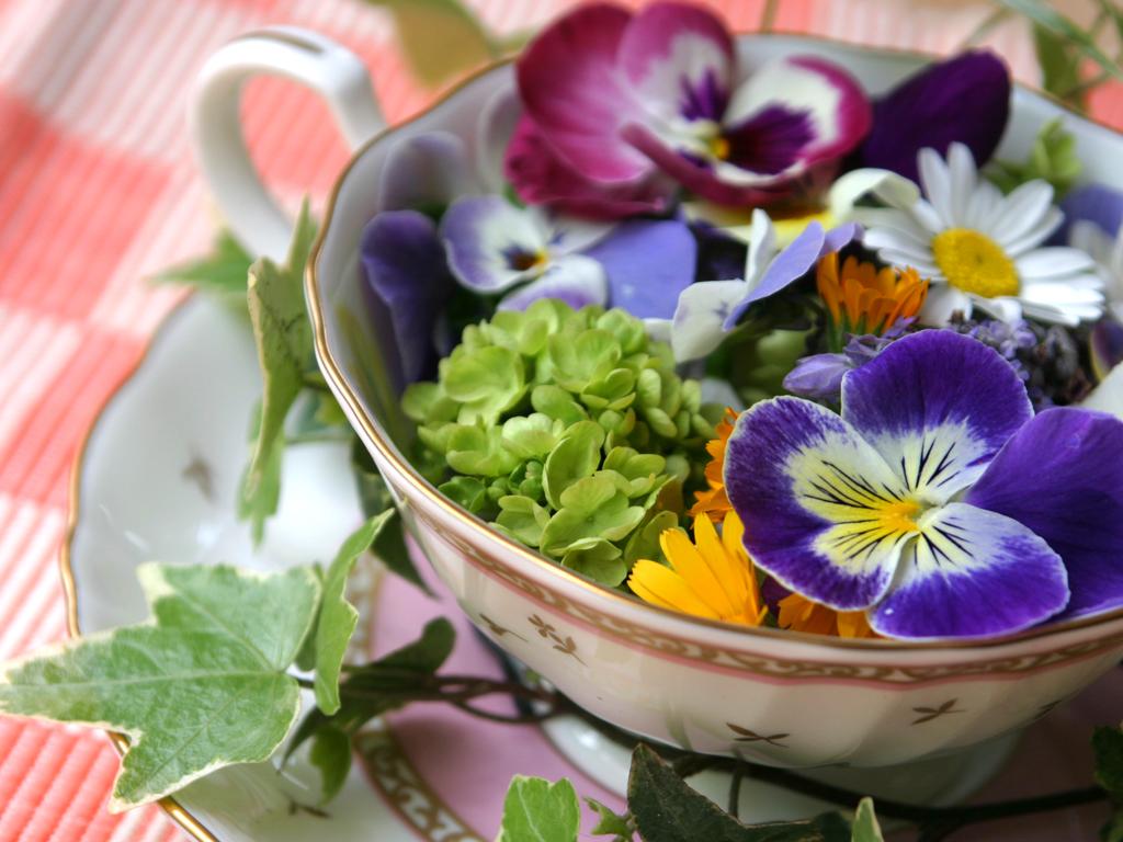 Are Herbal Teas Really Tea The Hour For Tea